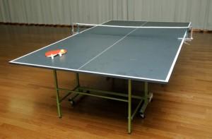別館オーロラ館-卓球